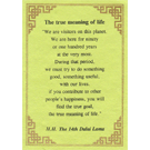 Quotes card - True Meaning Of Life